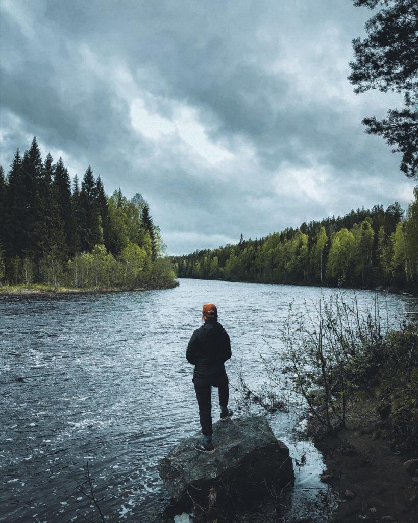 Im Wald in Schweden